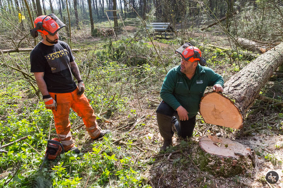 Alan Stephens with a trainee on a tree felling course