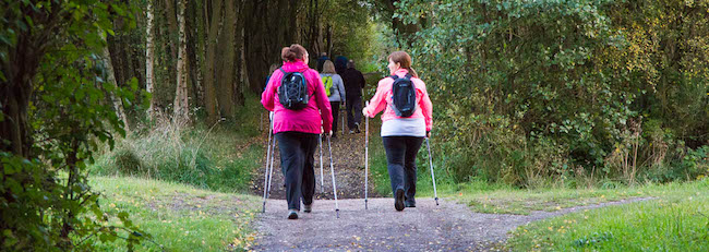 Nordic Walking at Chasewater Country Park